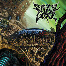 """SEPTYCAL GORGE """"Growing Seeds of Decay"""" death metal CD"""
