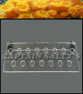 Captain Saltys Coral Reef Magnetic Invisible Frag Rack (Large) CS20003