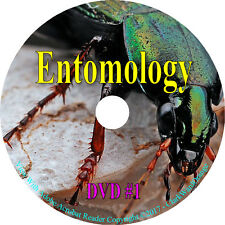 256 Entomology Books on DVD Insects Zoology Identify Anatomy Butterfly Study A1