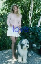 THE LOVE BOAT #153,HEATHER THOMAS,the fall guy,zapped,tv photo