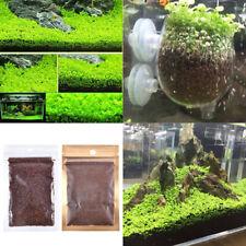 Lots Aquarium Plant Seeds Aquatic Double Leaf Carpet Water Grass Fish Tank Decor
