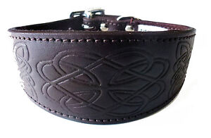Brown Leather Celtic Design Whippet Greyhound Collar Dog Collar levrier collier