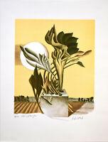 Karlheinz Steib: Steinpflanzen. Signierte Original-Farblithografie.