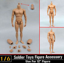 1/6 Scale Action Figure B005 Very Hot Toy TTM19 Muscular Nude Body USA Seller
