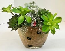 Decorative Green Grass Succulents in Glass Festive Pitcher Planter