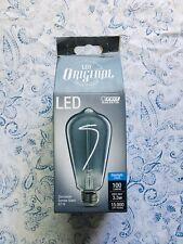Feit Dimmable LED Smoke Glass Light Bulb Vintage bulb