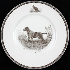 Vintage Wedgwood Kirmse American Sporting Dog Plate Wirehaired Pointing Griffon