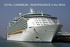 SOUVENIR FRIDGE MAGNET of CRUISE SHIP INDEPENDENCE of the SEAS - ROYAL CARIBBEAN