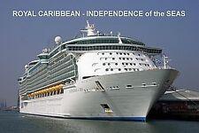 SOUVENIR FRIDGE MAGNET of CRUISE SHIP INDEPENDENCE of the SEAS - ROYAL CARIBBEAN