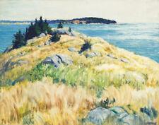 Newell Convers Wyeth Maine Islands Canvas Print 16 x 20      #4149