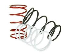 Sym Red Devil 50cc post 2000  Performance Clutch Contra Spring Pack (3)
