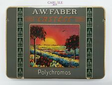Faber Castell Polychromos 111th Limited Edition Anniversary Set Of 12
