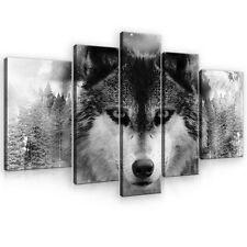 SET (5 teilig) Leinwandbild POSTER Tier Tieren Wolf Mond Himmel Wald 10147 S4A