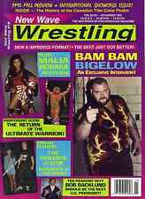 New Wave Wrestling Magazine No. 19 - 1995 Fall  - Return of The Ultimate Warrior