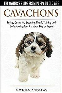 Cavachons The Owner S Guide From Puppy To Old Age Choosing Caring For Grooming