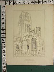 1842 Datierter Antik Aufdruck ~ Durham Kathedrale Zentral Tower & North Querhaus