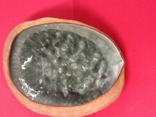 "Wonderful Signed Hammat Original Mid-Century Art Pottery Clamshell Bowl 13"" x 9"""