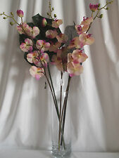 CYLINDER GLASS VASE CLEARGLASS 39.5cm x 12cm HOME DECOR FLOWERS PARTY DISPLAY