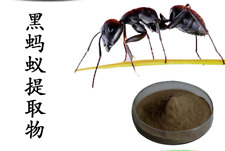 100g  PURE & WILD Mountain Ant  Polyrhachis 20:1 Extract powder