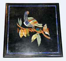 """12"""" Square Black Marble Coffee Table Top Lapis Parrot Inlay Cafeteria Decor B520"""