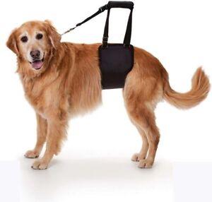 Safe Care Ginger Lead Dog Support and Rehabilitation Harness Belt Adjustable