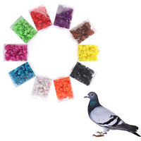 100Pcs Poultry Foot Ring Bird Pigeon Chicken Signage Carrying Mark R Q9QD$N