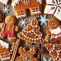 10Pcs Christmas Metal Cookie Biscuit Cutter Fondant Cake Decor Tool Mold KV