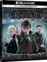 ANIMALI FANTASTICI I Crimini di Grindelwald (BLU-RAY 4K UHD + BLU-RAY) JUDE LAW