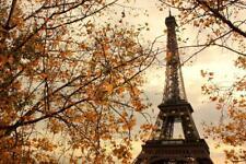 Eiffel Tower Paris France in Autumn Photo Art Print Poster 24x36 inch