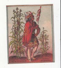 Bradley Super Phosphate Fertilizer A Nash Lima NY Indian Vict Card c1880s