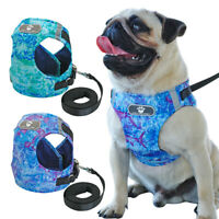 Small Dog Harness Lead Kit Reflective Adjustable Pet Puppy Cat Vest Jack Russell