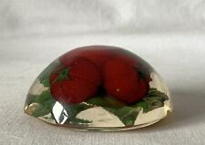 Vintage Resin Lucite Plastic Octagonal Base Paperweight Lid Red Tomatoes +Leaves