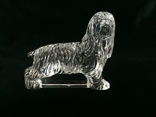 WATERFORD Crystal Cocker Spaniel Dog Figurine Paperweight ~ MINT