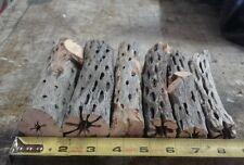 "5 PCS 6"" Cholla Wood Cactus Organic Untreated Fish Reptiles Crabs Birds LARGE"