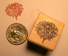 P24 Chrysanthemum flower Miniature NEW rubber stamp WM
