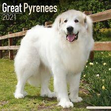 Great Pyrenees Calendar 2021 Premium Dog Breed Calendars