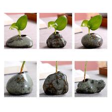Ceramic Mini Creative Vase Decor Hydroponic Flower Planter Home Desktop Ornament