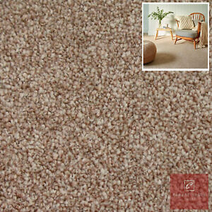 Clearance   Special Quality Beige Carpets Twist Pile Stain Resistant Feltback