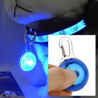 Mini Lampe LED Lumière de Nuit de Sécurité pour Collier Chien / Bleu