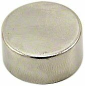 Magnet Expert Ltd F646-1-amz First4magnets - Calamita in Neodimio N42 Spessa e