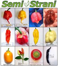 120 Seeds HOT CHILI PEPPERS Coll 1: CAROLINA REAPER RED & YELLOW, GHOST, TABASCO