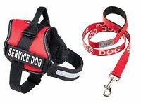 SERVICE DOG Harness & Leash SET - Choose Red, Black, Pink, by Industrial Puppy