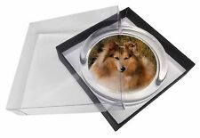 Sheltie on Hay Bale Glass Paperweight in Gift Box Christmas Present, AD-SE55PW