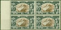 New Zealand 1935 2 1/2d Chocolate & Slate SG560b P.13.5 x 14 V.F MNH Block of 4