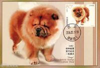 China 2006,  A Lion Dog - Chow Chow, Maximum Card