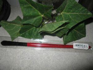 Smashbox #5 Concealer Brush