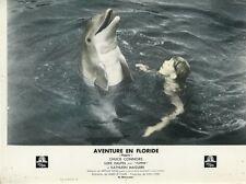 LUKE HALPIN FLIPPER DOLPHIN 1963 VINTAGE LOBBY CARD ORIGINAL #7