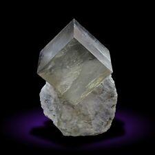 Pyrite cube in matrix specimen from Navajun, La Rioja, Spain #40
