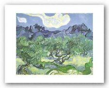 MUSEUM ART PRINT The Olive Trees 1889 Vincent van Gogh