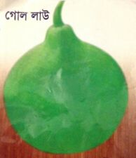 1 Pack 12 Seeds Bangladeshi / Asian Pumpkin Seed .